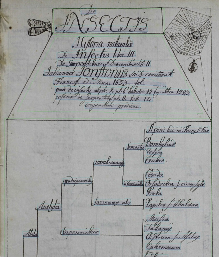 Image of a Linnean Society manuscript in Transkribus